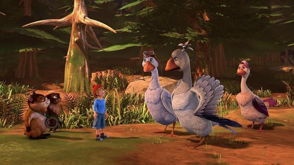 Nils bitten Akka darum, seine neuen Freunde zu ihrem Partybaum zu bringen. | Rechte: BR/Studio 100 Animation/Studio 100 NV