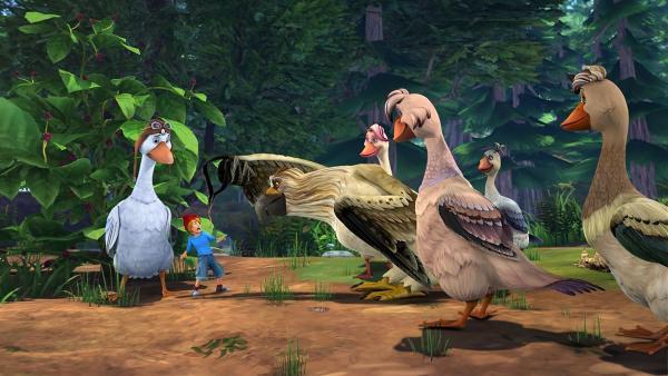 Nils hat die Nase voll von Vogelfutter. | Rechte: BR/Studio 100 Animation/Studio 100 NV
