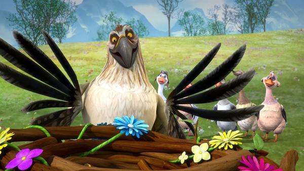 Gorgo ist ein Meister darin, hübsche Neste zu bauen. | Rechte: BR/Studio 100 Animation/Studio 100 NV