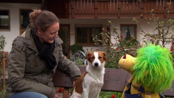 Davina, Hofhund Ilka und OLI | Rechte: SWR