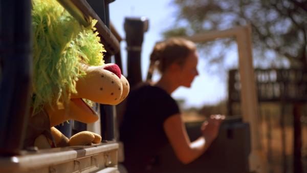 OLI sieht zum ersten Mal die Wildhunde. | Rechte: SWR/EIKON Media/Steffen Bohnert