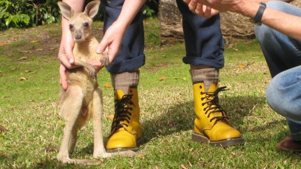 Hüpfen wie ein Känguru / Kleines Känguru vor Paulas Beinen | Bild: BR / Text und Bild Medienproduktion GmbH & Co. KG | Rechte: BR / Text und Bild Medienproduktion GmbH & Co. KG