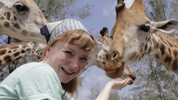 Kopf hoch, Giraffe! / Paula mit Giraffen im Hallerpark | Bild: TEXT + BILD Medienproduktion | Rechte: TEXT + BILD Medienproduktion