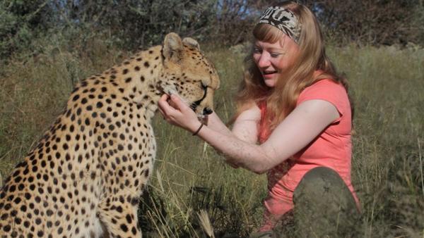 Wie schnell rennt ein Gepard? / Paula krault Gepard   Bild: BR / TEXT + BILD Medienproduktion   Rechte: BR / TEXT + BILD Medienproduktion