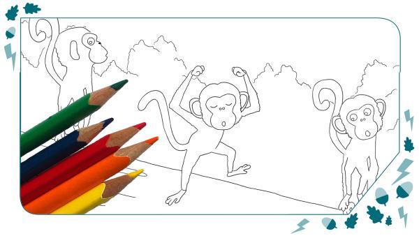 Male den Affentanz bunt aus! | Rechte: /KiKA