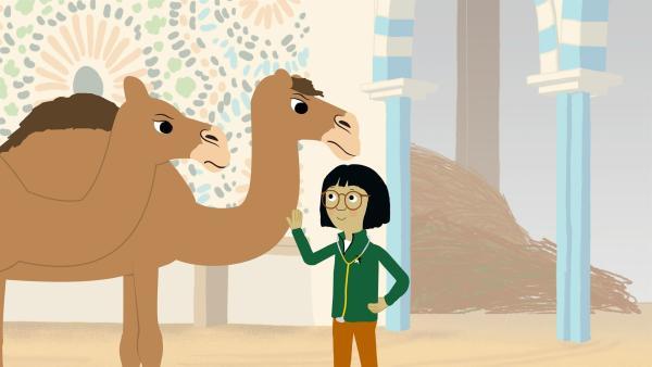 Die Kamele Katja und Kurt sind gar nicht gut drauf. Ob Dr. Sue herausfinden kann, was mit ihnen los ist? | Rechte: KiKA/Igloo Productions Ltd.