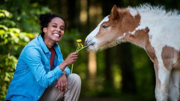 Ein Tag bei der Tierfotografin / Für ein schönes Foto lockt Pia das Fohlen ?Shemrock? mit Löwenzahn | Bild: BR | Rechte: BR