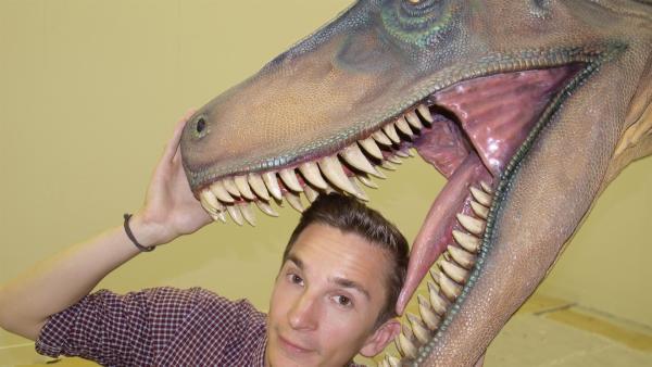 Eric mit einem Dinosaurier-Modell. | Rechte: ZDF/Michaela Kinzler