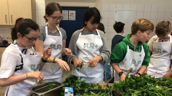 Die Schülerinnen und Schüler der sechsten Klasse waschen und zupfen jede Menge Kräuter, die gleich in das Mittagessen wandern sollen. | Rechte: ZDF/Susanne Kaupp