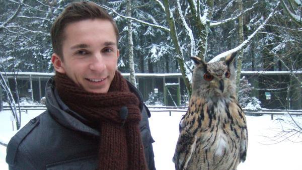 Eric Mayer nimmt hautnahen Kontakt zu Falken, Geiern und Adlern auf. | Rechte: ZDF/Sandra Palm