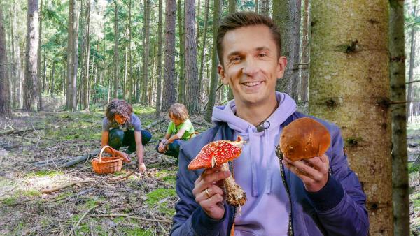 PUR+ - Pilze   Rechte: ZDF