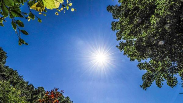 Sonne | Rechte: ZDF