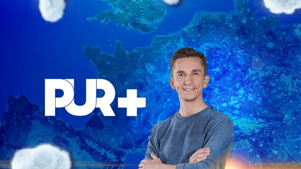 PUR+ auf zdftivi.de | Rechte: ZDF