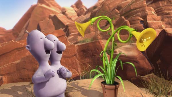 Eddi ist der einzige, dem es gelingt, seine Pflanze zum Wachsen zu bringen. | Rechte: KiKA/Snapper Productions/Q Pootle 5 LTD