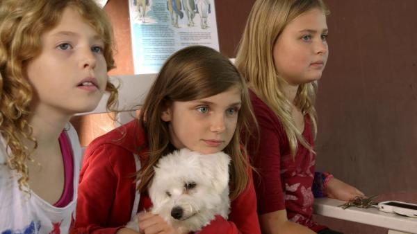 Amanda mit ihren neuen deutschen Freundinnen Lucy (li.) und Franka (re.) | Rechte: SWR/kurhaus production