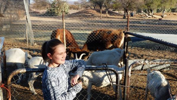 Auf der Farm gibt es viel im Umgang mit den verschiedenen Tierarten zu lernen. | Rechte: KiKA/Erik Lötsch