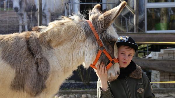 Julian mit seinem Pflegeesel Felix. | Rechte: MDR
