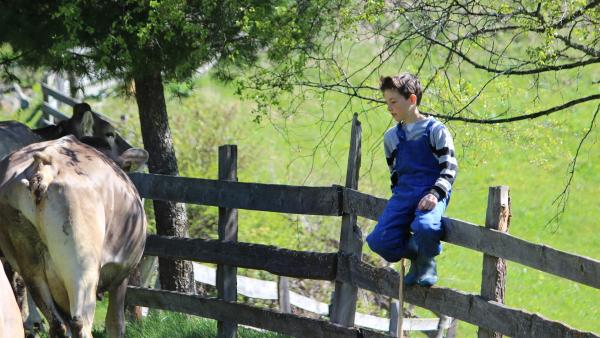 Philipp lebt auf dem höchstgelegenen Hof in Obernberg / Österreich. Er möchte Bauer werden, wie sein Vater. Also packt der 10-jährige kräftig mit an. | Rechte: rbb/PANGOLIN DOXX Filmproduktion
