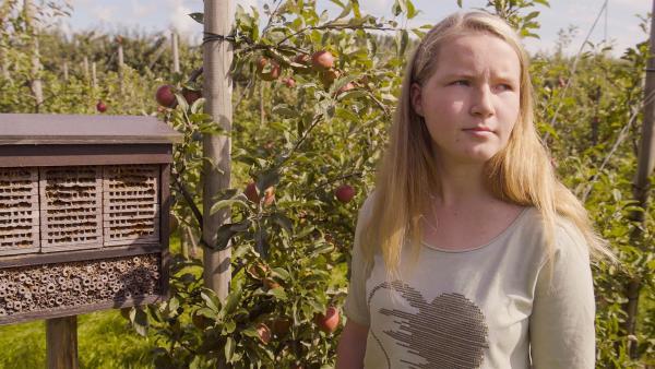 Daria auf der Apfelplantage ihrer Großeltern, wo sie fleißig bei der Ernte helfen wird. | Rechte: RB