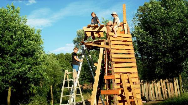 Janko, Paul und Juli bauen einen Drachenturm aus Holz für das Sommersonnen-Wendefest. | Rechte: rbb/Klaus Tümmler
