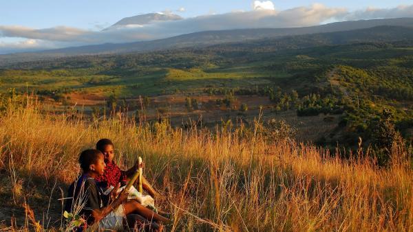 Zuckerrohr schmeckt herrlich süß. Im Hintergrund der Kilimandscharo. | Rechte: SWR/Frank Feustle
