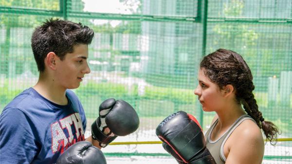 Orkan und Daphne liefern sich einen Boxkampf. | Rechte: Saxonia Media