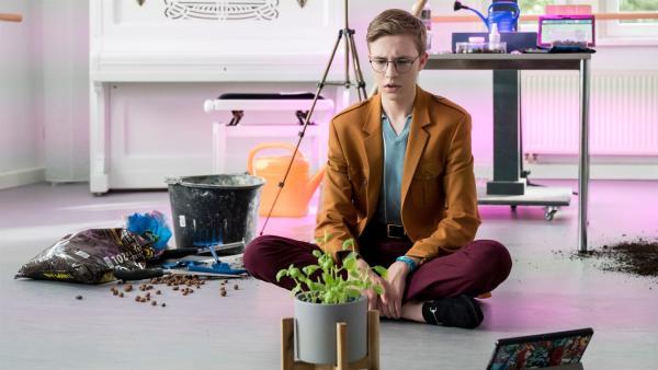 Gustav (Tamino Schenke) verzweifelt an dem Partnerprojekt im Bio-Modul. | Rechte: mdr/Saxonia Media/Ulli Koch