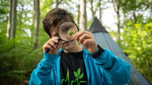 Die Einsteiner, allen voran der sehr an Pflanzen interessierte Paul (Malique Heidorn), freuen sich auf die Waldtage. | Rechte: mdr/Saxonia Media/Felix Abraham