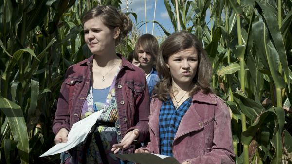 Feli (Sabrina Wollweber, li.) und Ronja (Miriam Katzer, re.) im Maislabyrinth. Jetzt ist Orientierungssinn gefragt! | Rechte: MDR/Anke Neugebauer