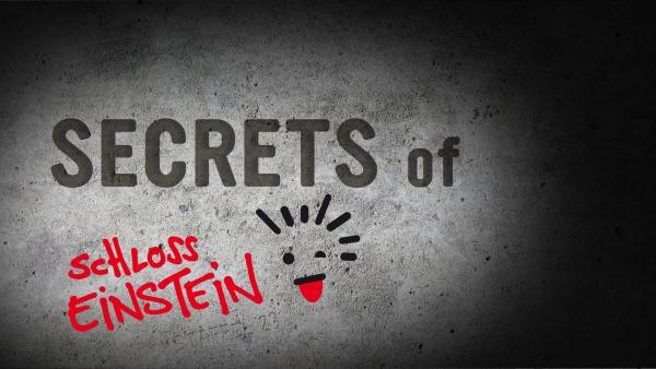 Kennst du alle Geheimnisse der 23. Staffel? | Rechte: KiKA/mdr/Saxonia