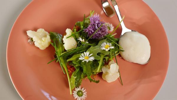 In dieser Folge steht ein vegetarisches Gericht auf dem Kochplan: Es gibt Kartoffelkarottenrösti mit Mangochutney und Karfiolpüree. | Rechte: ZDF/ORF/René Rothkopf
