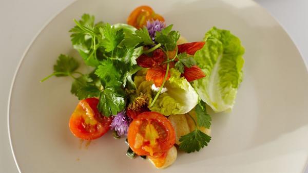 Heute stehen Gnocci mit Tomatensauce und Blütensalat auf dem Speiseplan.   Rechte: ZDF/ORF/René Rothkopf