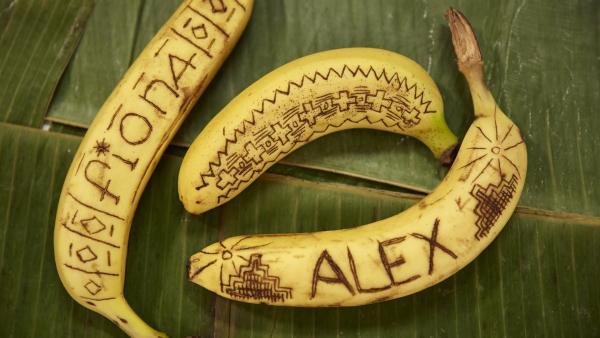 Während in der Küche Vietnamesische Frühlingsrollen zubereitet werden, verzieren Noah, Hannah, Fiona und Luis Bananen. | Rechte: ZDF/ORF/René Rothkopf