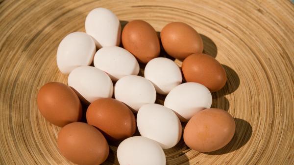 weiße und braune Eier in einer Holzschale | Rechte: KiKA/ Bildredaktion / René Rothkopf