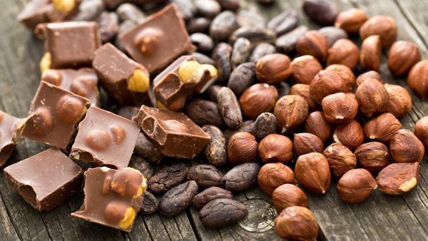 Nussschokolade, Haselnüsse und Kaffee, Kakao | Rechte: colourbox.com