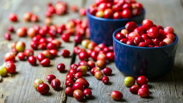 Cranberries in Schale und außerhalb auf Holztisch | Rechte: colourbox.com