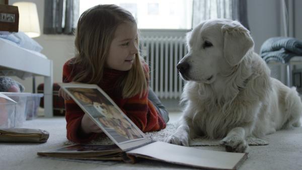 Die neunjährige Selma und ihr Hund Casper schauen sich Bilder von früher an. | Rechte: SWR/NRK/Beta Film