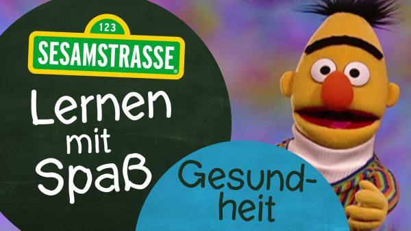 Bert mit Logo   Rechte: NDR Foto: Grafik