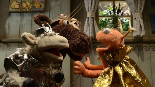 Wolle, Pferd und Finchen haben unterschiedliche Banden gegründet. Günni hält zu Finchen.   Rechte: NDR/Uwe Ernst