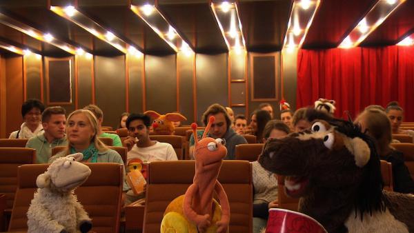 Finchen lädt Wolle und Pferd zu einem Kinobesuch ein. Die beiden sind sehr aufgeregt, denn schließlich waren sie ja noch nie im Kino! | Rechte: NDR