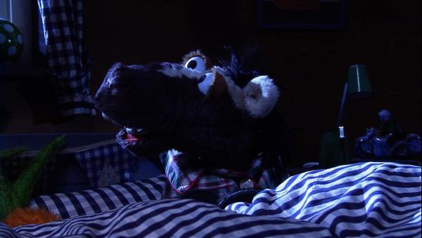 Es ist eine stürmische Nacht und Pferd kann nicht einschlafen. Ständig hört er irgendwelche komischen Geräusche, die ihm Angst machen. | Rechte: NDR