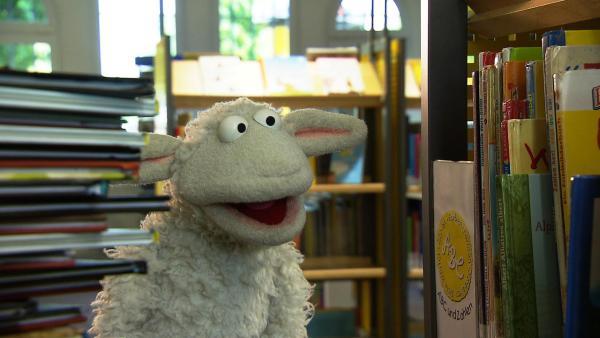 Wolle und Pferd brauchen dringend neue Bücher zum Lesen, aber sie haben kein Geld, deshalb beschließen sie Bücher aus der Bücherei auszuleihen.   Rechte: NDR