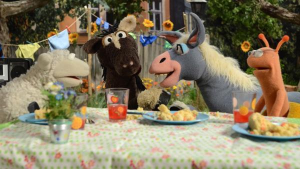 Marie ist die neue Posteselin in der Sesamstrasse und Pferd möchte sie beeindrucken...   Rechte: NDR/Uwe Ernst