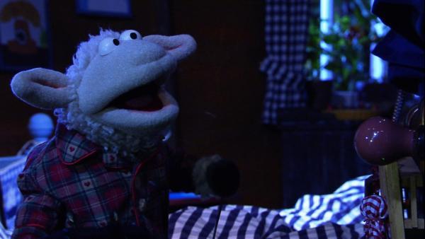 Wolle probiert verschiedene Einschlaftipps aus: eine Milch mit Honig, eine Gute-Nacht-Licht, ein Einschlaflied – aber nichts hilft! | Rechte: NDR