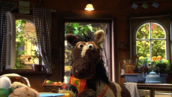 Pferd sollte auf die frisch gemachte Marmelade aufpassen. Aus Versehen fallen ihm alle Gläser von der Fensterbank und gehen kaputt. Pferd will sein Missgeschick nicht zugeben und erzählt Wolle in seiner Not eine Lüge. | Rechte: NDR/Sesame Workshop