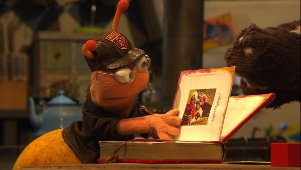 Finchen leiht sich von Wolle und Pferd das tolle Märchenbuch, das sie immer zum Einschlafen lesen. | Rechte: NDR/Sesame Workshop