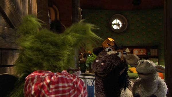 Wolf erzählt, dass er in den Wald zieht, weil echte Wölfe da in Rudeln leben. Pferd und Wolle werden nachdenklich. Vielleicht sollten sie auch mal so leben wie echte Pferde und Schafe. | Rechte: NDR/Sesame Workshop