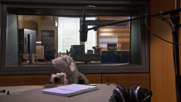Wolle und Pferd im Radiostudio. | Rechte: NDR/Sesame Workshop