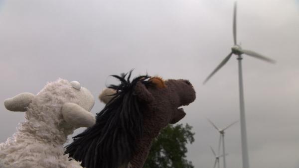 Pferd und Wolle machen sich auf Günnis Tipp hin auf zu einem Windpark. | Rechte: NDR/Sesame Workshop