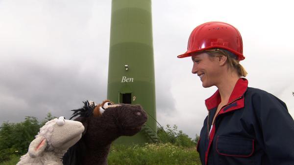 Pferd und Wolle machen sich auf Günnis Tipp hin auf zu einem Windpark und treffen dort auf Julia, die Ihnen erklärt, wie man aus Wind Strom macht. | Rechte: NDR/Sesame Workshop